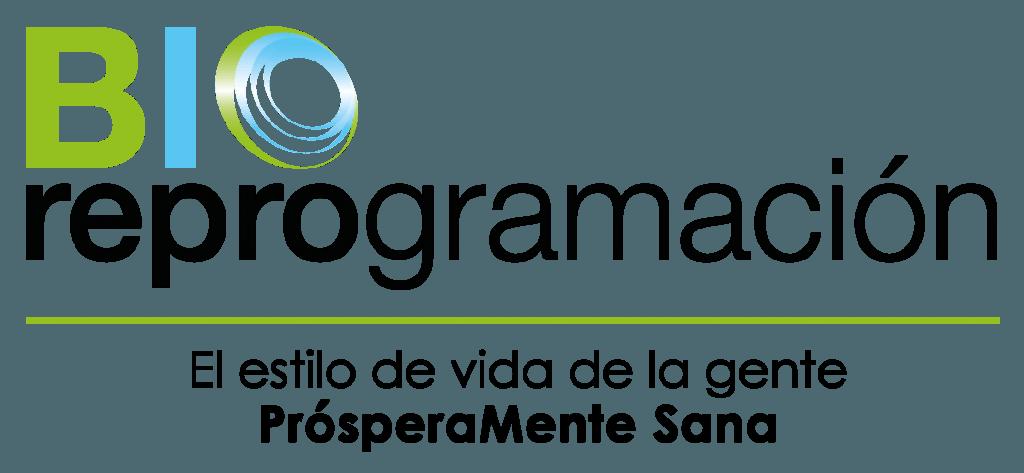 logotipo-standard-slogan-png
